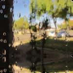Rain Water Glass